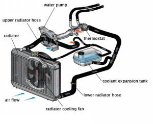 Car Cooling System >> Cooling Systems Repair Maintainance Care Plus Auto
